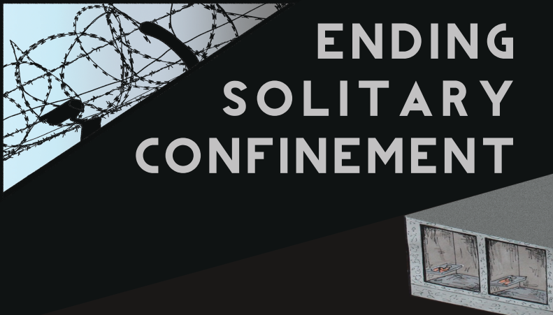 Issue 1: Solitary Confinement